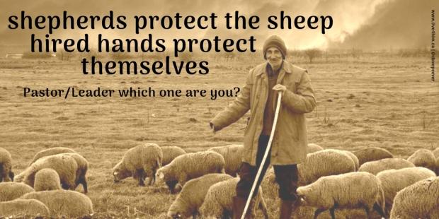 shepherd - worker